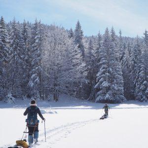 Ekovida EkovidaEvent slowtourisme neige pulka