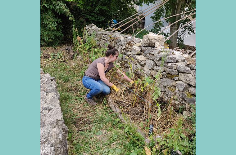 Vlog – Initiation à la permaculture